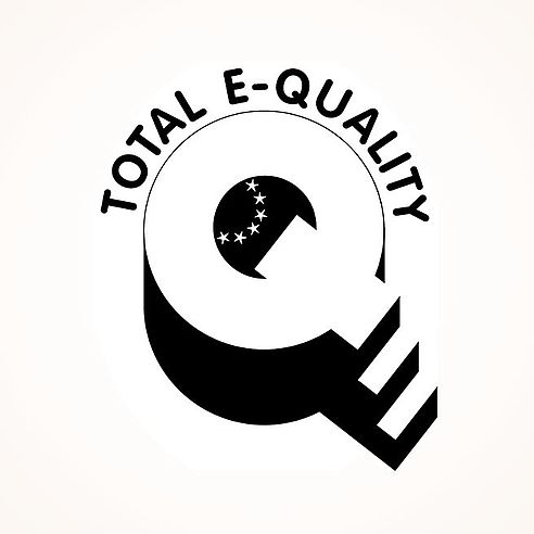 Seal of TOTAL E-QUALITY in 2008, 2011 und 2014 | Queisser